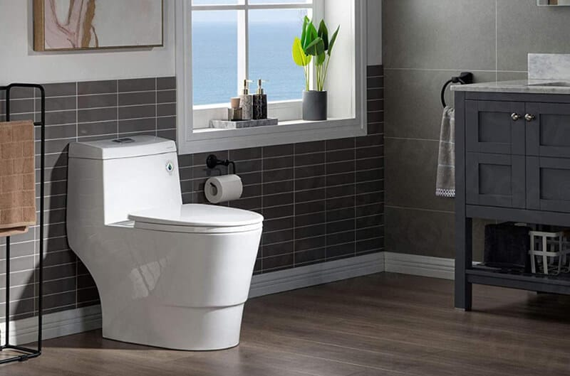 Best Dual Flush Toilet