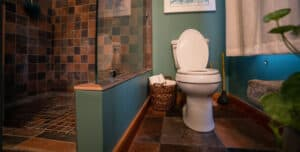 Best Toilet For Basement