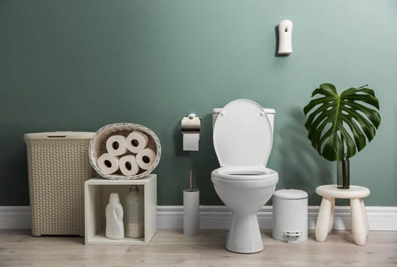 best budget electronic toilet