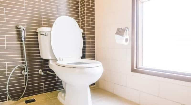 best electric dry composting toilet for basement