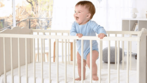 Best Organic Crib Mattress 2021