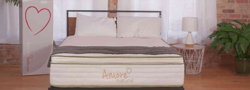 Top Rated Best Mattress For Osteoporosis Sufferers Brands