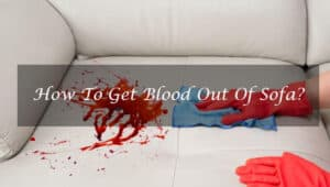 How To Get Blood Out Of Sofa