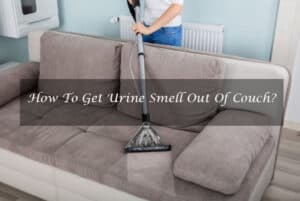 How To Get Urine Smell Out Of Couch