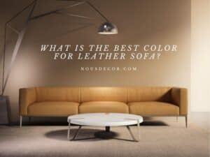 What Is The Best Color For Leather Sofa