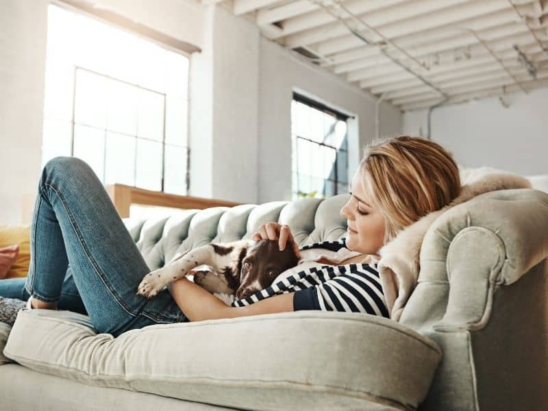 Which Sofas Last The Longest - FAQs
